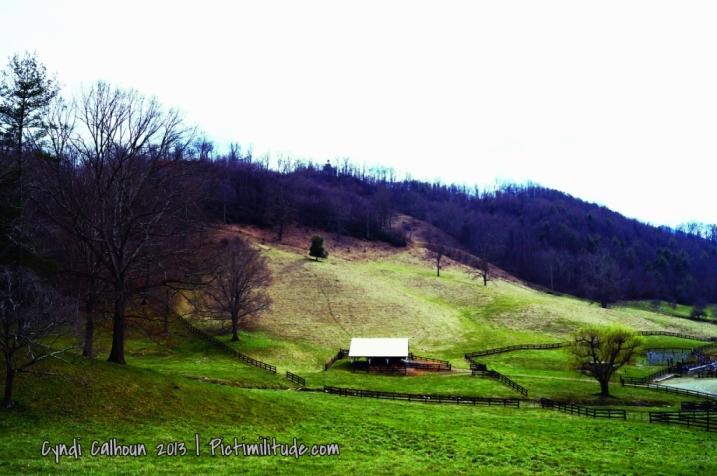 Farm in WNC