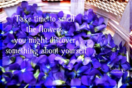 Take time to smell the violets.